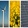 Fotolia_81725898_Subscription_XL_développement_durable copie.jpg
